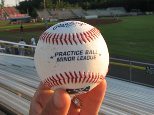Potomac Nationals The Ballpark Guide