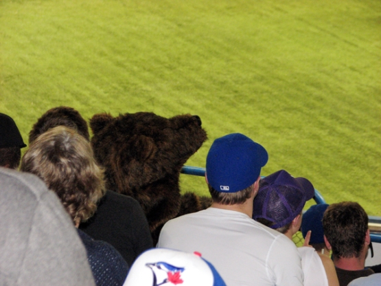 rogers-centre-bear-fan-costume