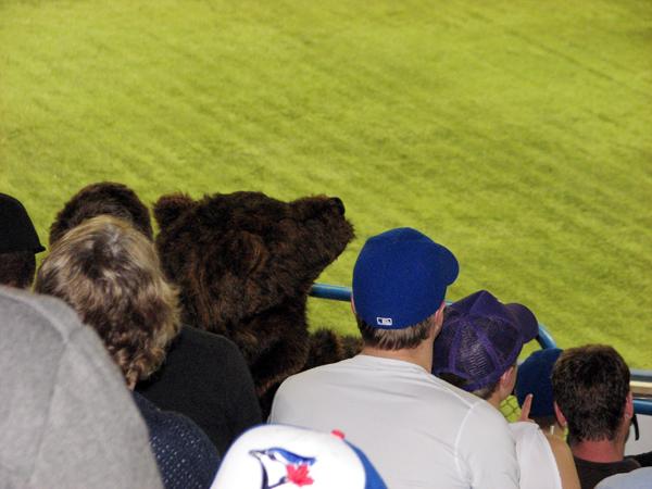 rogers-centre-bear-fan-costume