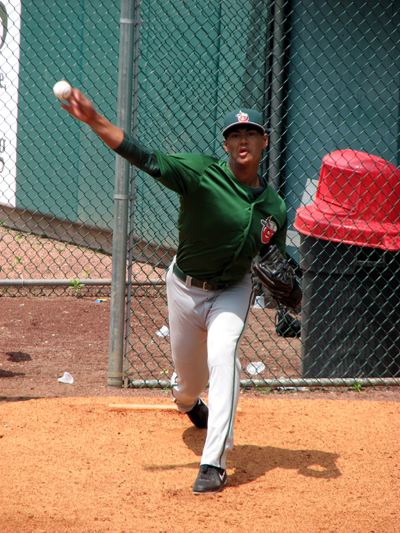 joe-ross-fort-wayne-tincaps-bullpen