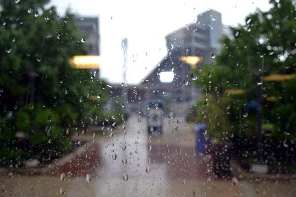 medlar-field-at-lubrano-park-team-shop-rain