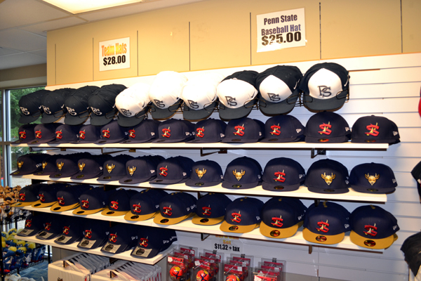 medlar-field-at-lubrano-park-team-shop