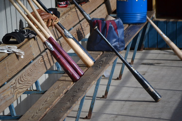 washington-wild-things-dugout-bats
