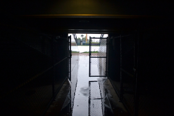 whataburger-field-tunnel