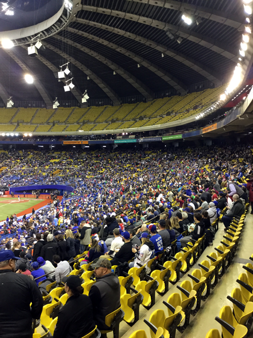 Toronto Blue Jays Standing Room Only